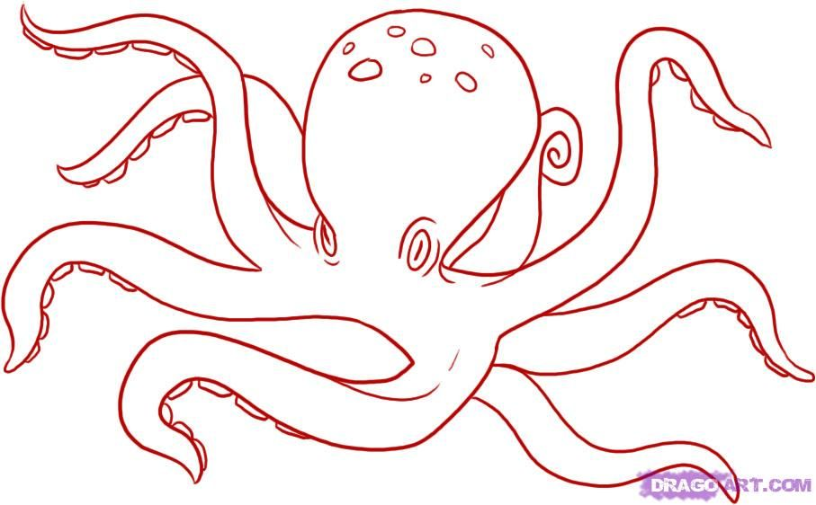How to draw an octopus school science ocean study for Cute octopus drawing