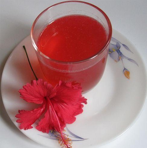 Hibiscus Oil Benefits For Hair Hibiscus Fooddrink Hibiscus