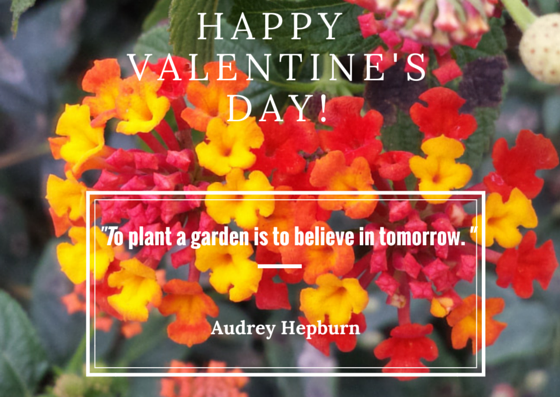 """Famous Quote From Audrey Hepburn - """"To plant a garden is ..."""