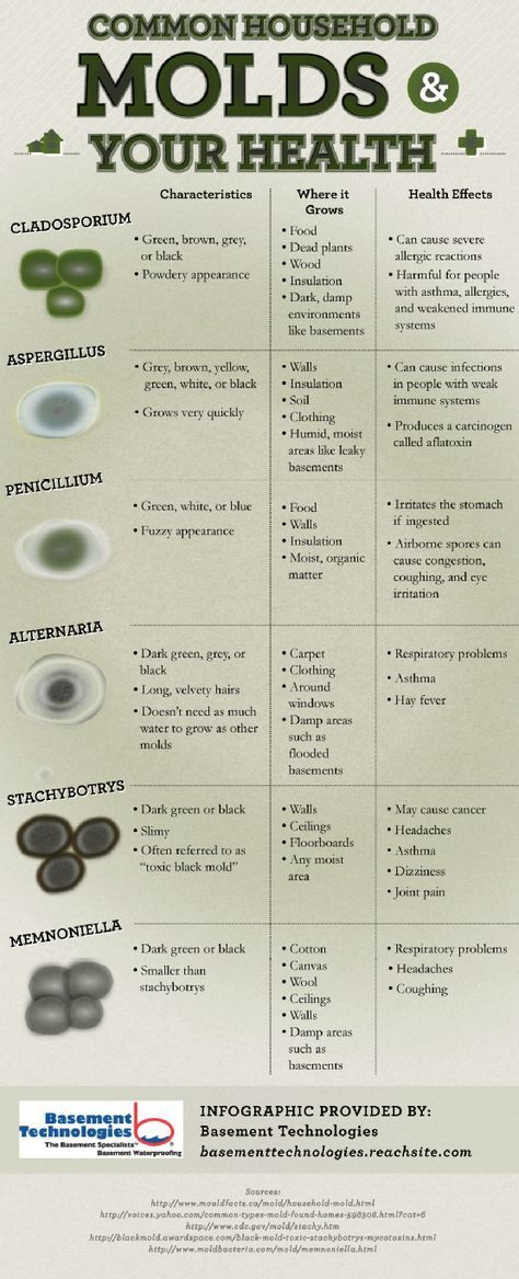 A Listing Of The Different Types Of Mold And Associated Characteristics And Health Risks Of Each
