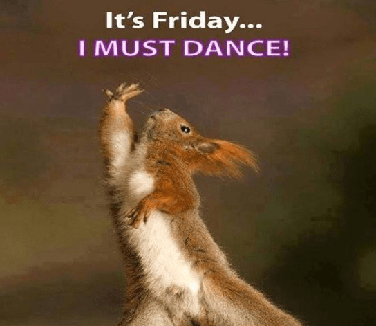 2020 Huge Collection Of Happy Friday Memes >> HD Download ...