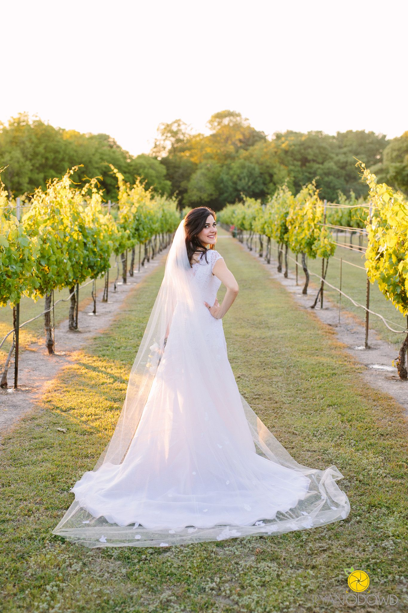 Best Dallas Wedding Photographer Midas Hill Vineyard Bride Elegant