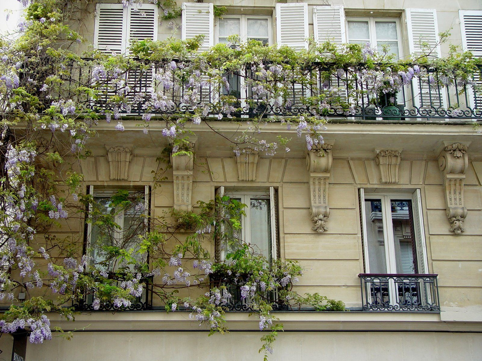 Balcons fleuris paris balcons fleuris pinterest balcons fleuri et paris - Terrasse et jardin fleuri paris ...