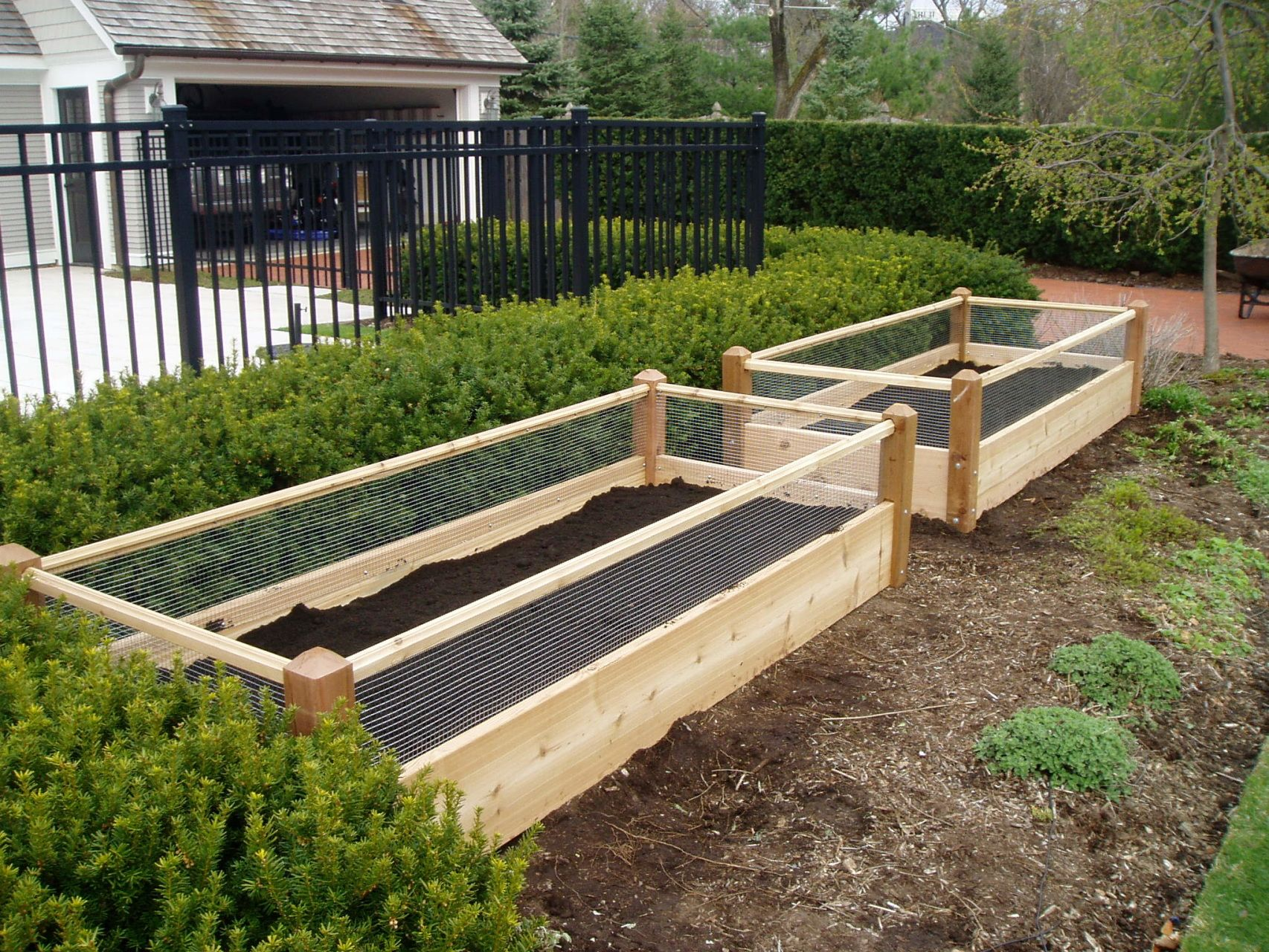 Superbe Raised Bed Vegetable Garden