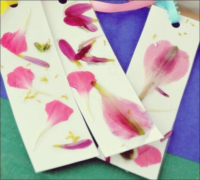 Schöne gepresste Blumen-Handwerk #blumen #gepresste #handwerk #schone The post …