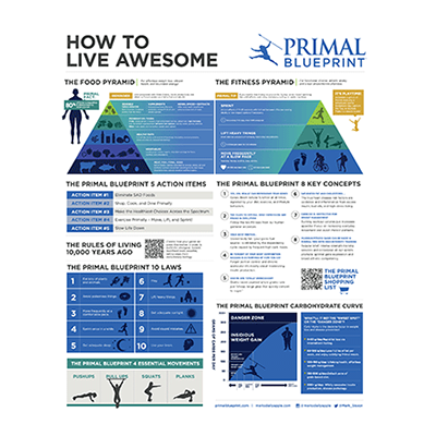 Primal blueprint poster cooking pinterest lost weight and primal blueprint poster malvernweather