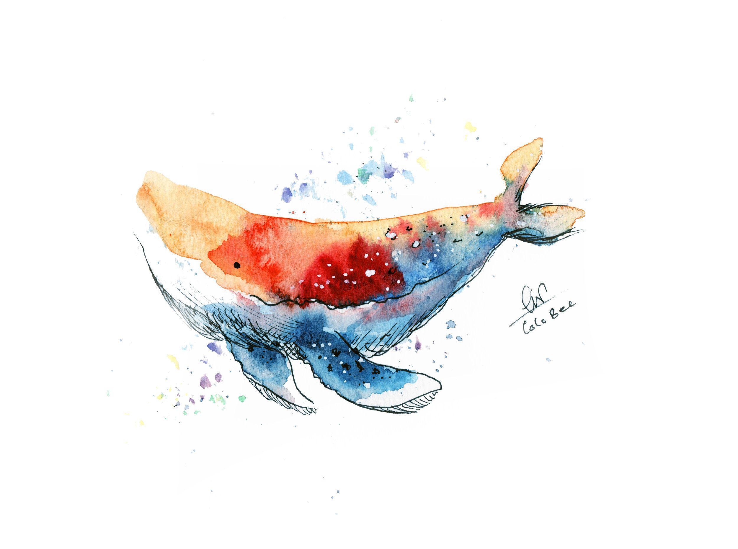 Cute Rainbow Whale Watercolor Whale Art Print Bee Art