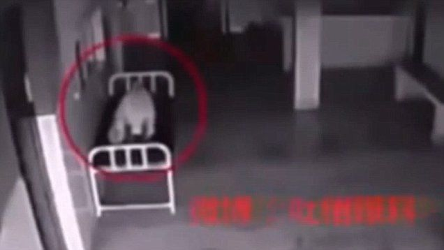 Is This Eerie Video Proof There S A Soul Surveillance Camera Human Soul Security Camera