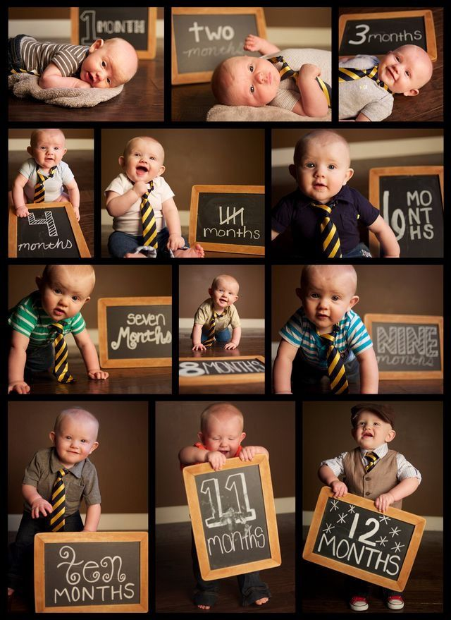 Photoshoot ideas babies month to month how to organize