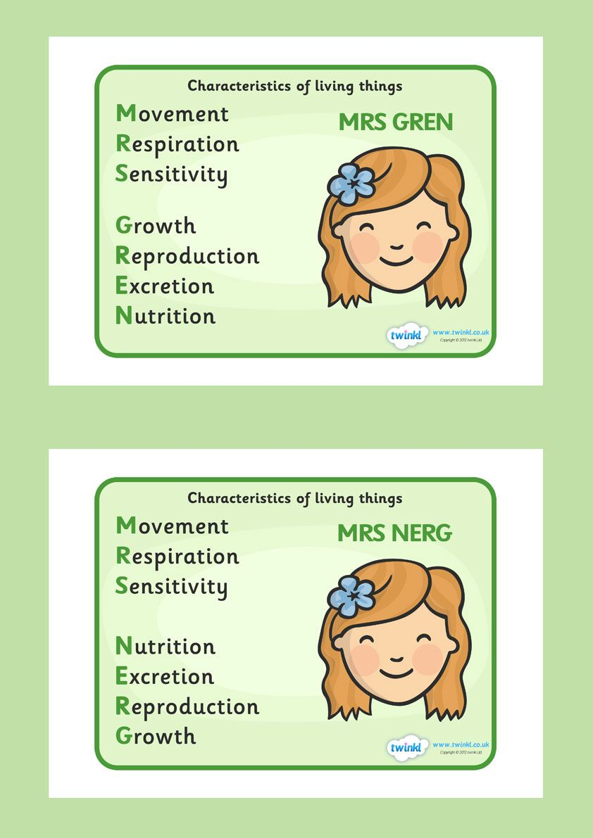 Mrs Gren and Nerg Life Processes Display Poster | Life Processes