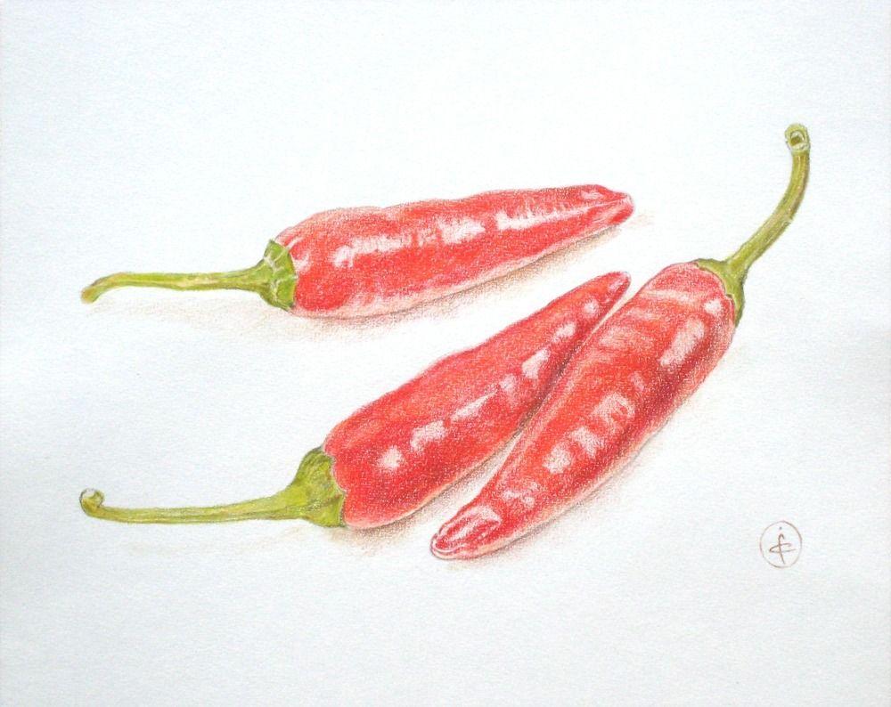 Piments dessin aux crayons de couleur 24 x 30 cm - Dessin piment ...