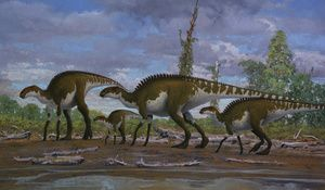 The 10 Books You Absolutely Must Read to Understand the History of Earth #historyofdinosaurs