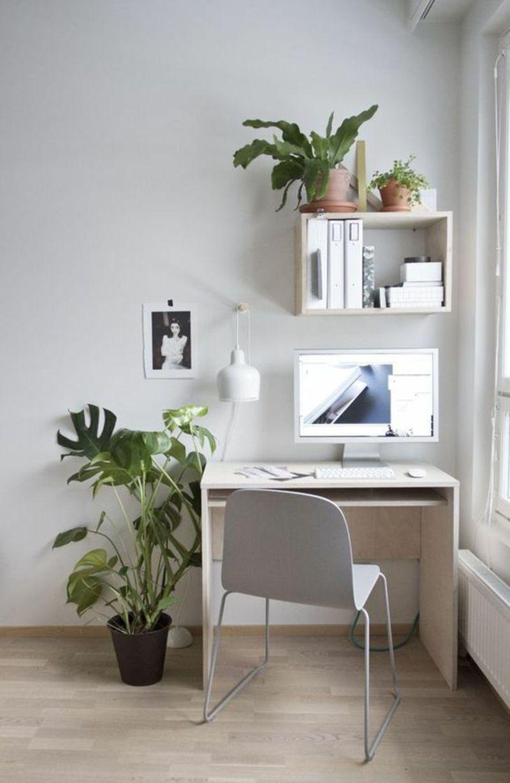 Arbeitsplatz einrichten Schreibtisch am Fenster Zimmerpflanzen ...
