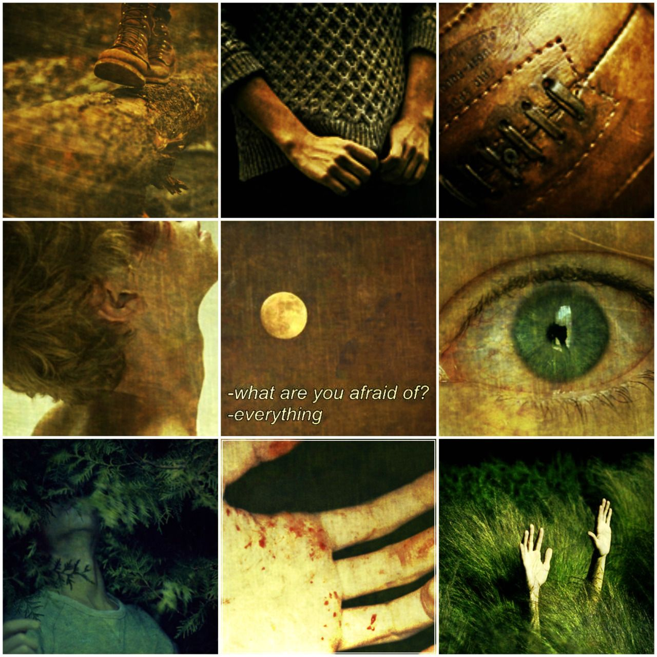 Lord Of The Flies Aesthetic Ralph Lord Of The Flies Lord Aesthetic Photography