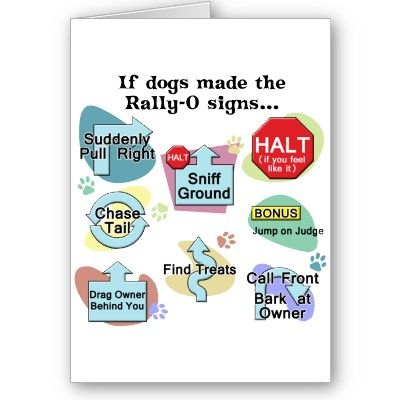 Rally Obedience I Have This On A T Shirt Rally Dogs Obedience