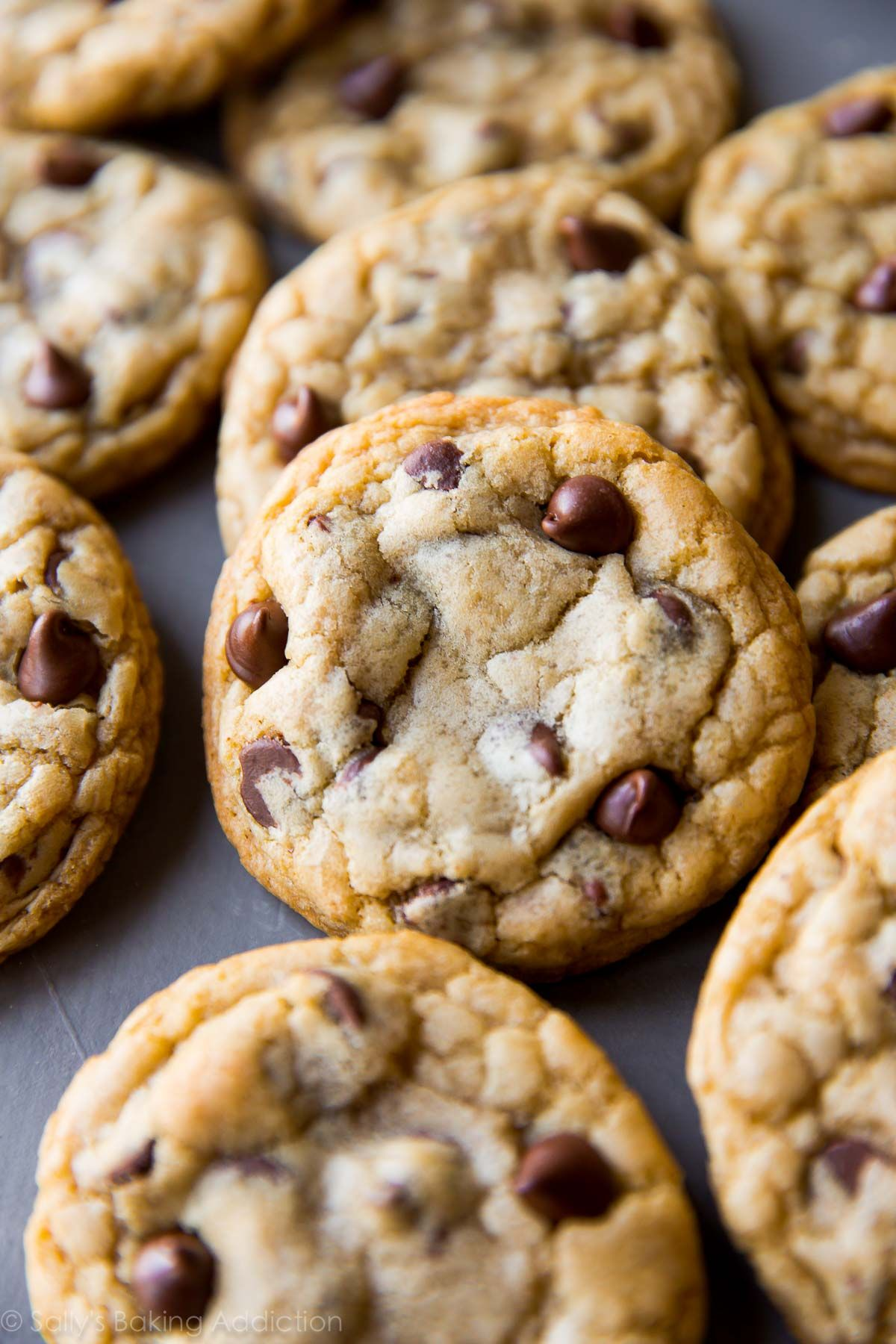 3rd Cookbook | Sallys baking addiction, Chocolate chips and Chips
