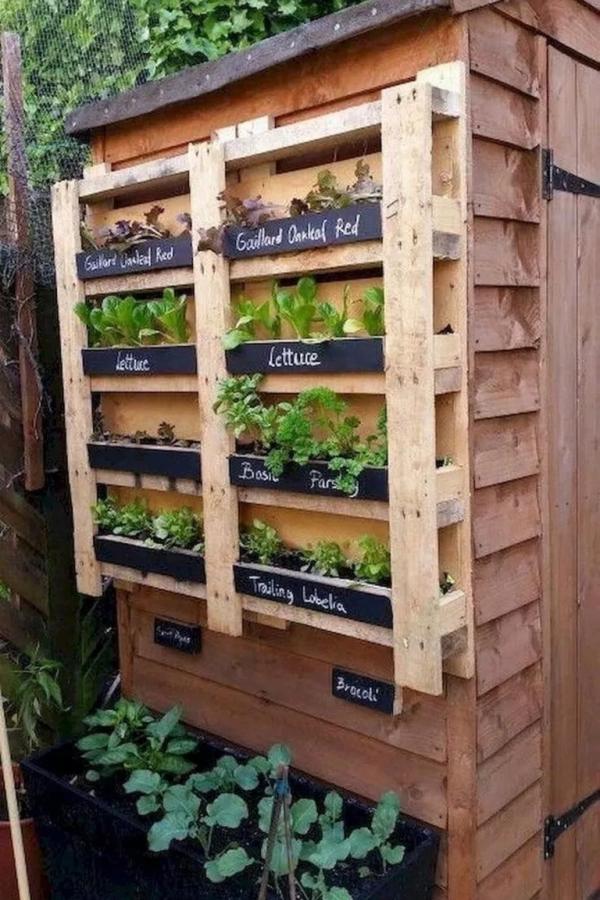 Awesome Diy Projects Pallet Garden Design Ideas 10 Vertical Garden Diy Vertical Garden Design Palette Garden