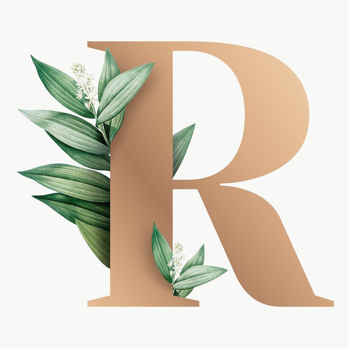 Botanical Capital Letter R Transparent Png Premium Image By Rawpixel Com Aum Alphabet Wallpaper Flower Artwork Lettering