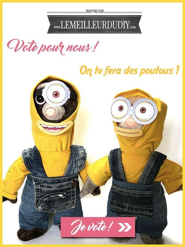 Votez pour moi et gagnez Hervé et François ! - Le Meilleur du DIY #JEUCONCOURS