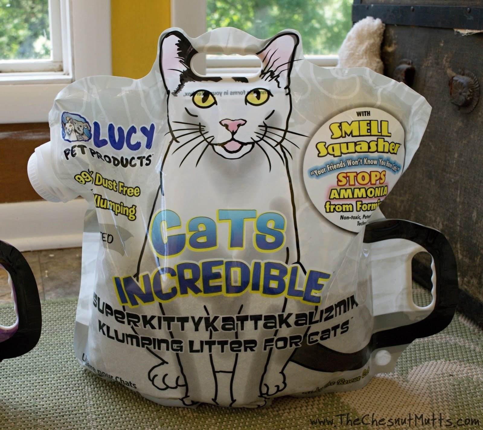 Lucy pet products cats incredible the incredibles