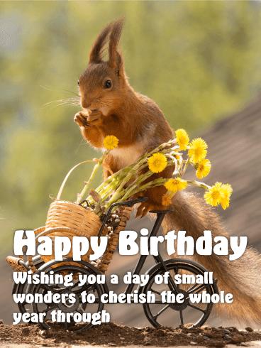 Sweet Squirrel Happy Birthday Card Birthday Greeting Cards By Davia Happy Birthday Cards Birthday Greetings Happy Birthday Wishes Cards