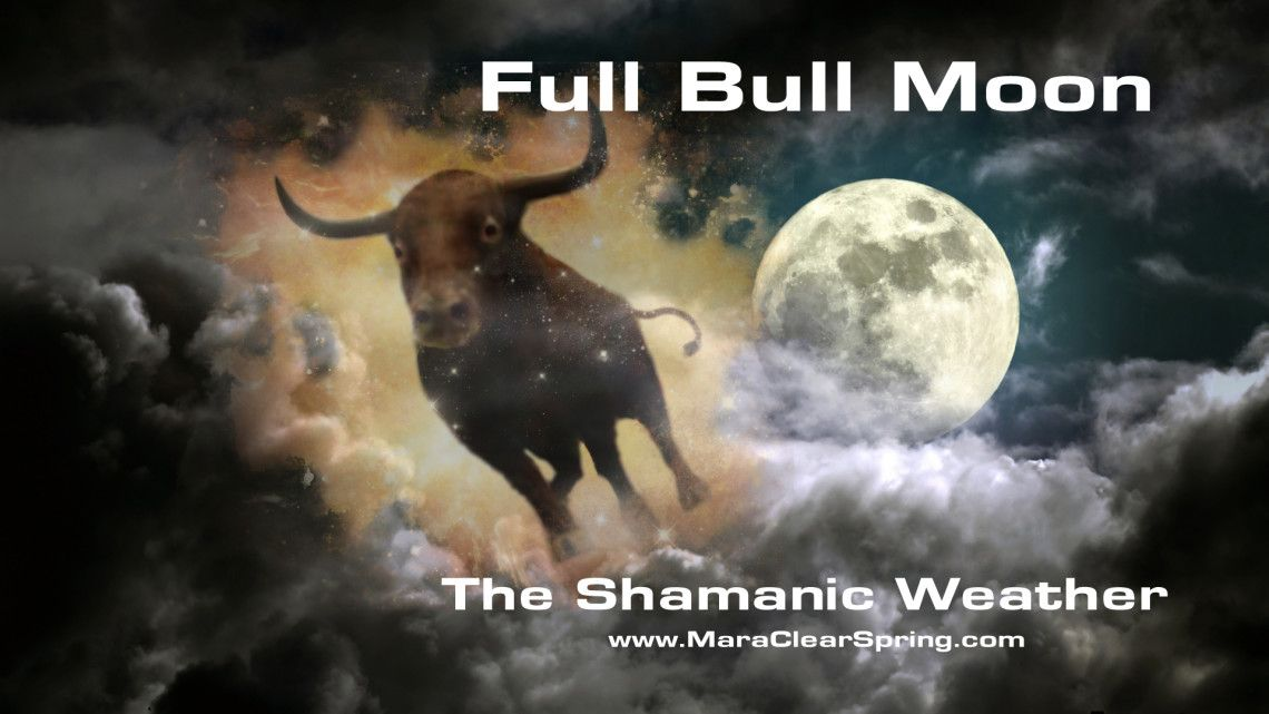 Venus, Goddess of Love, gets a little blind-sided by the Full Bull power unleashed with this empowering Full Bull Moon!