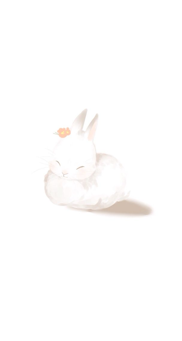 Bunny Iphone Wallpaper In 2019 White Wallpaper For Iphone