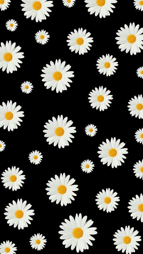 Pin By Madison Snyder On Patterns Daisy Wallpaper Gold Wallpaper Phone Flower Background Wallpaper Background images iphone wallpaper
