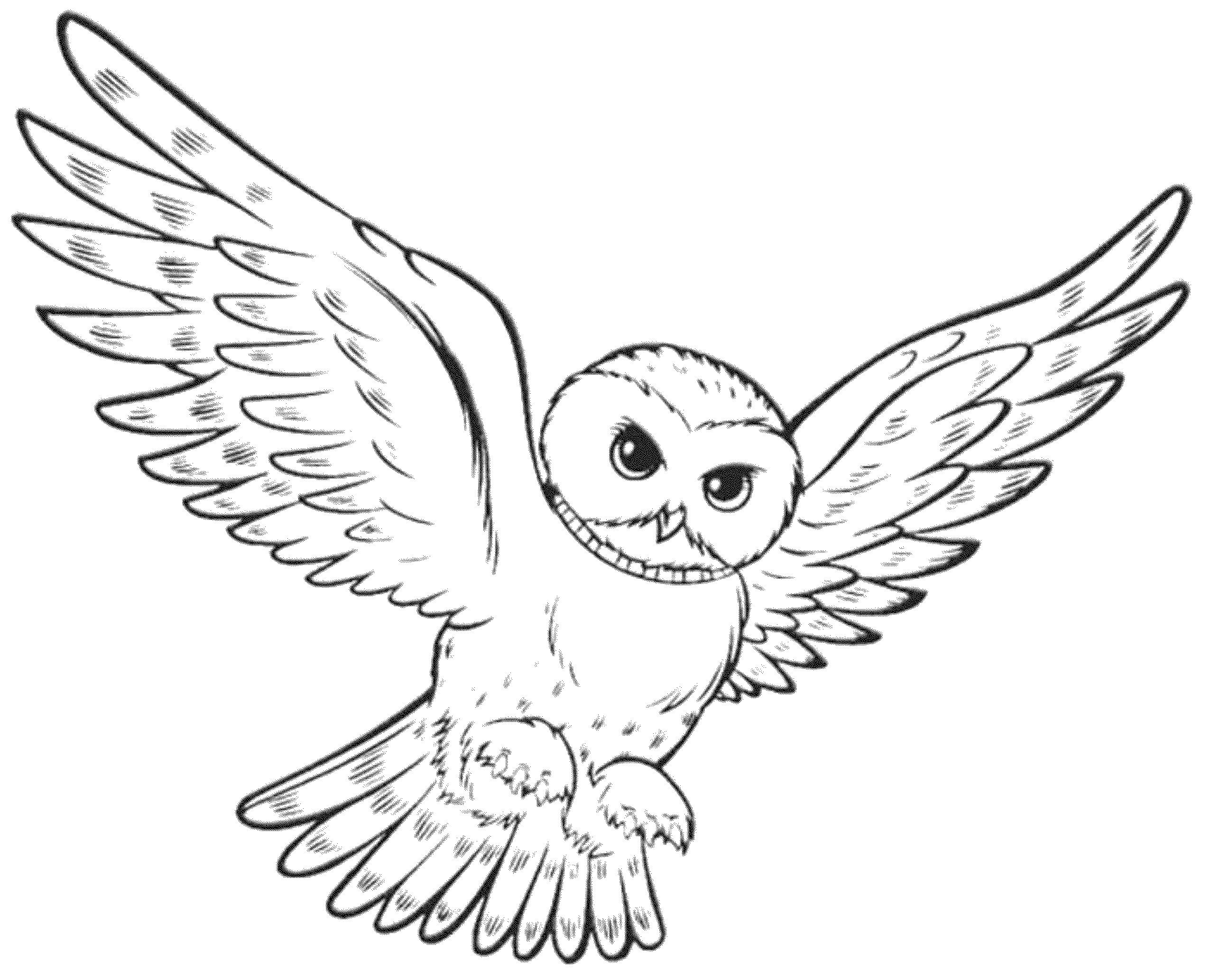 Owl Coloring Pages Flying Printable Kids Colouring Entrancing