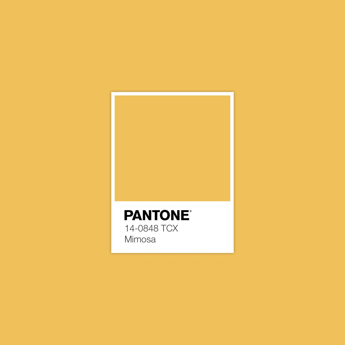summer simple colour mustard yellow spring | Colours | Pinterest ...
