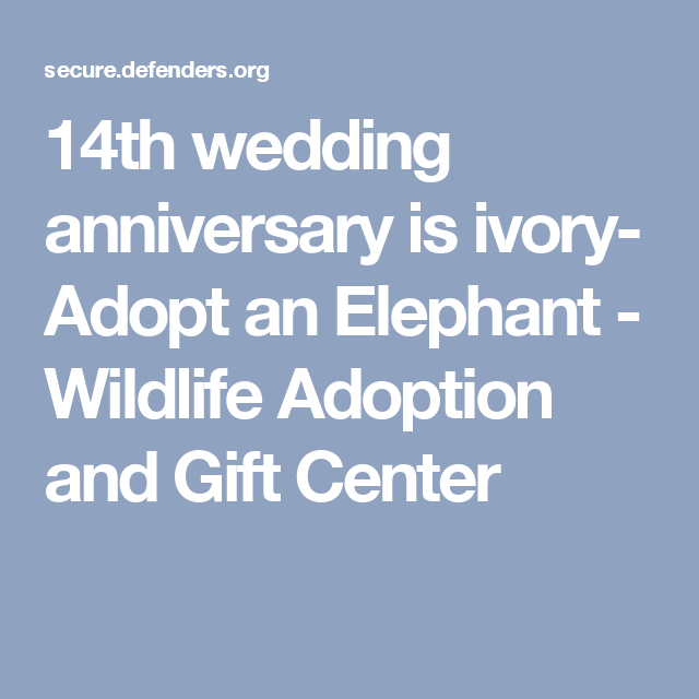 14th Wedding Anniversary Gift Ideas: Symbolically Adopt An Elephant