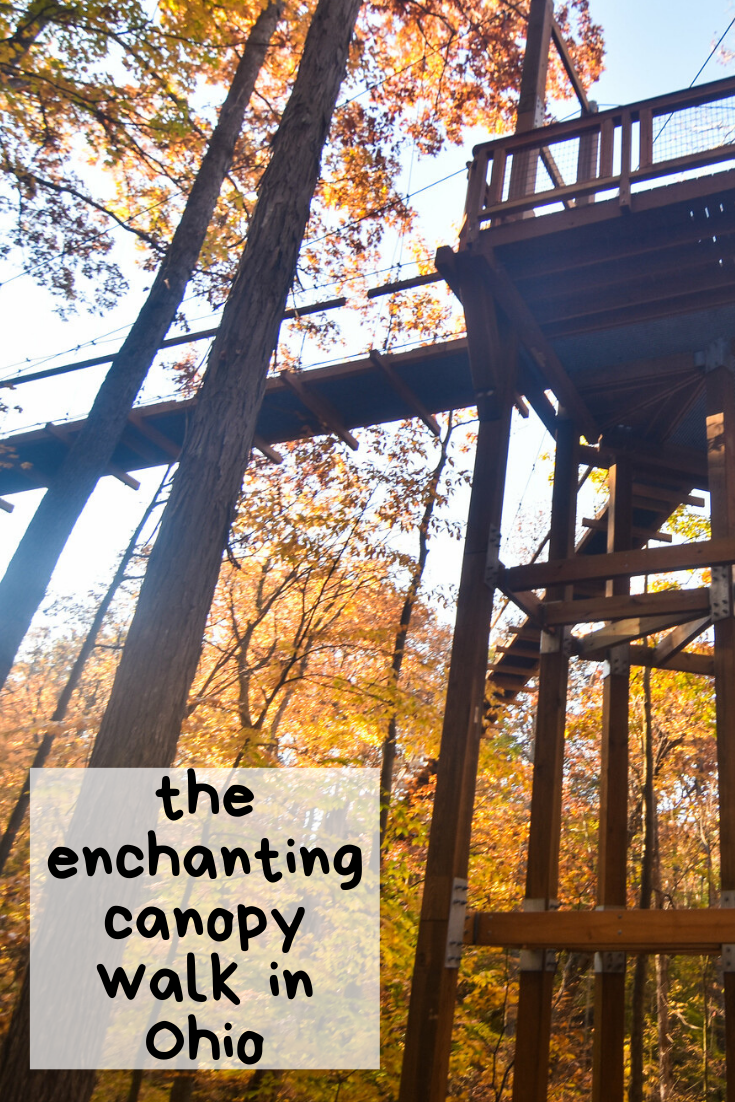 This magical canopy walk in Ohio takes you soaring high above the treetops. It's a family-friendly outdoor attraction that definitely belongs on your summer travel bucket list. #fallbucketlist