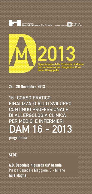 dam 2013 programma