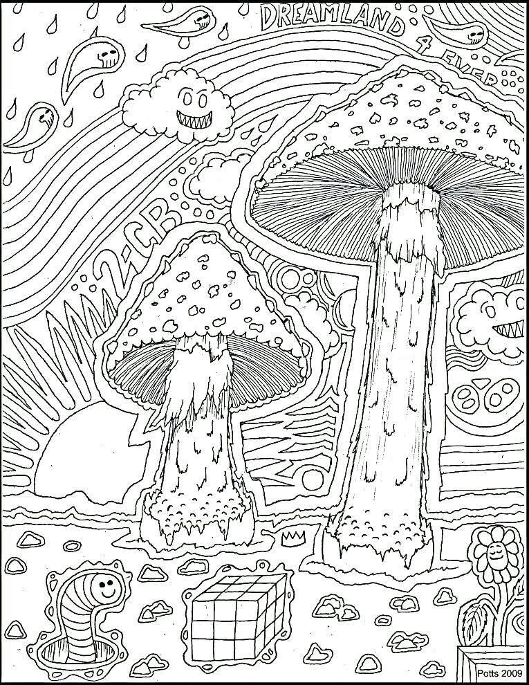 Pin On Mushroom