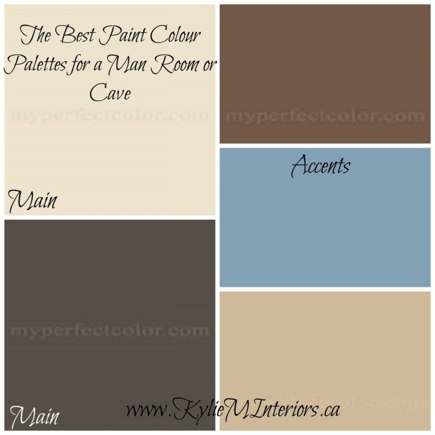 Best Paint Colors For A Man Room Cave