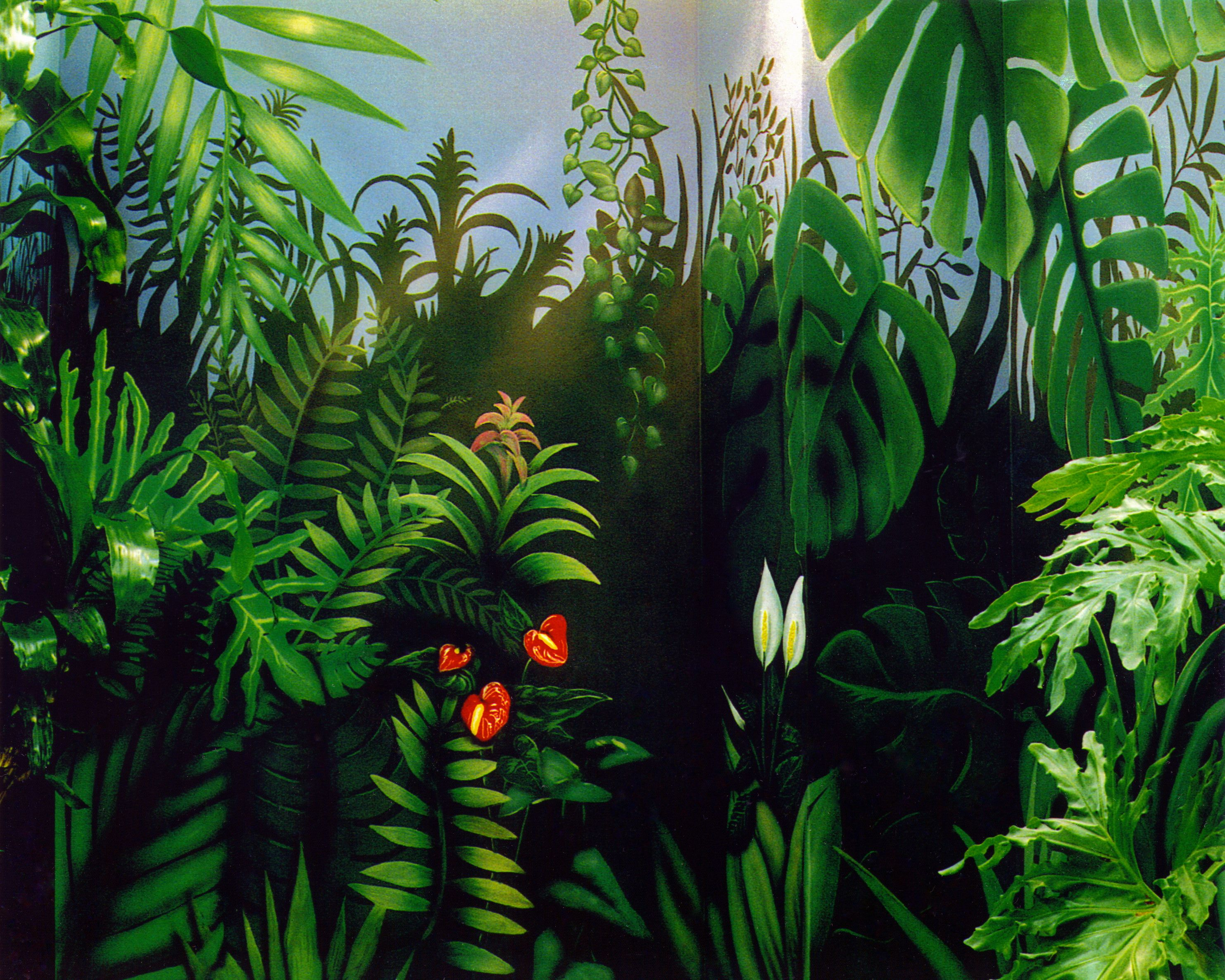 jungle flower landscape photography - Google Search | Tropical ...