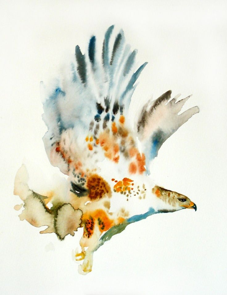 Hawk by dimdiart original watercolor painting 14x11inch