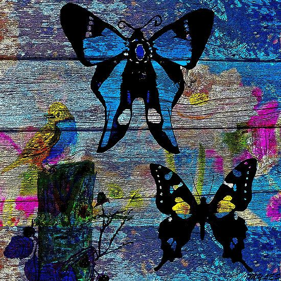 Butterfly on Driftwood