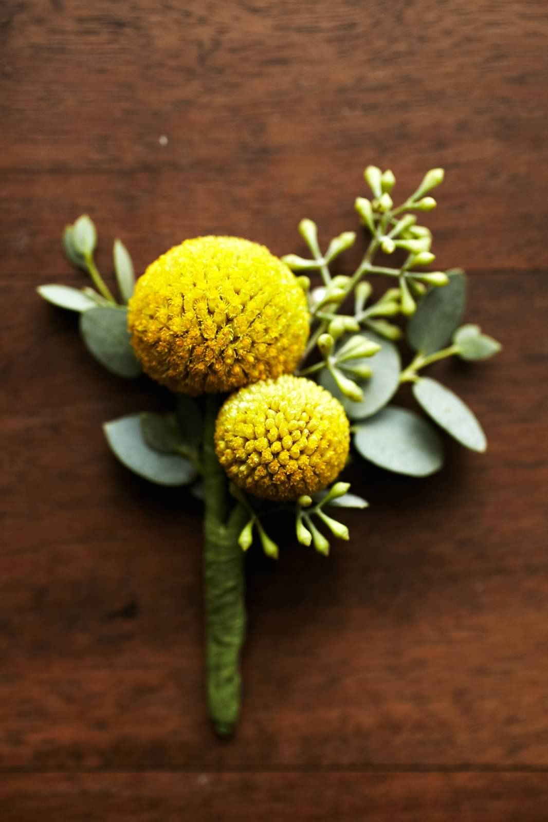 Billy Ball Boutonniere Accented By Seeded Eucalyptus Yellow Boutonniere Yellow Wedding Bouquet Mustard Yellow Wedding