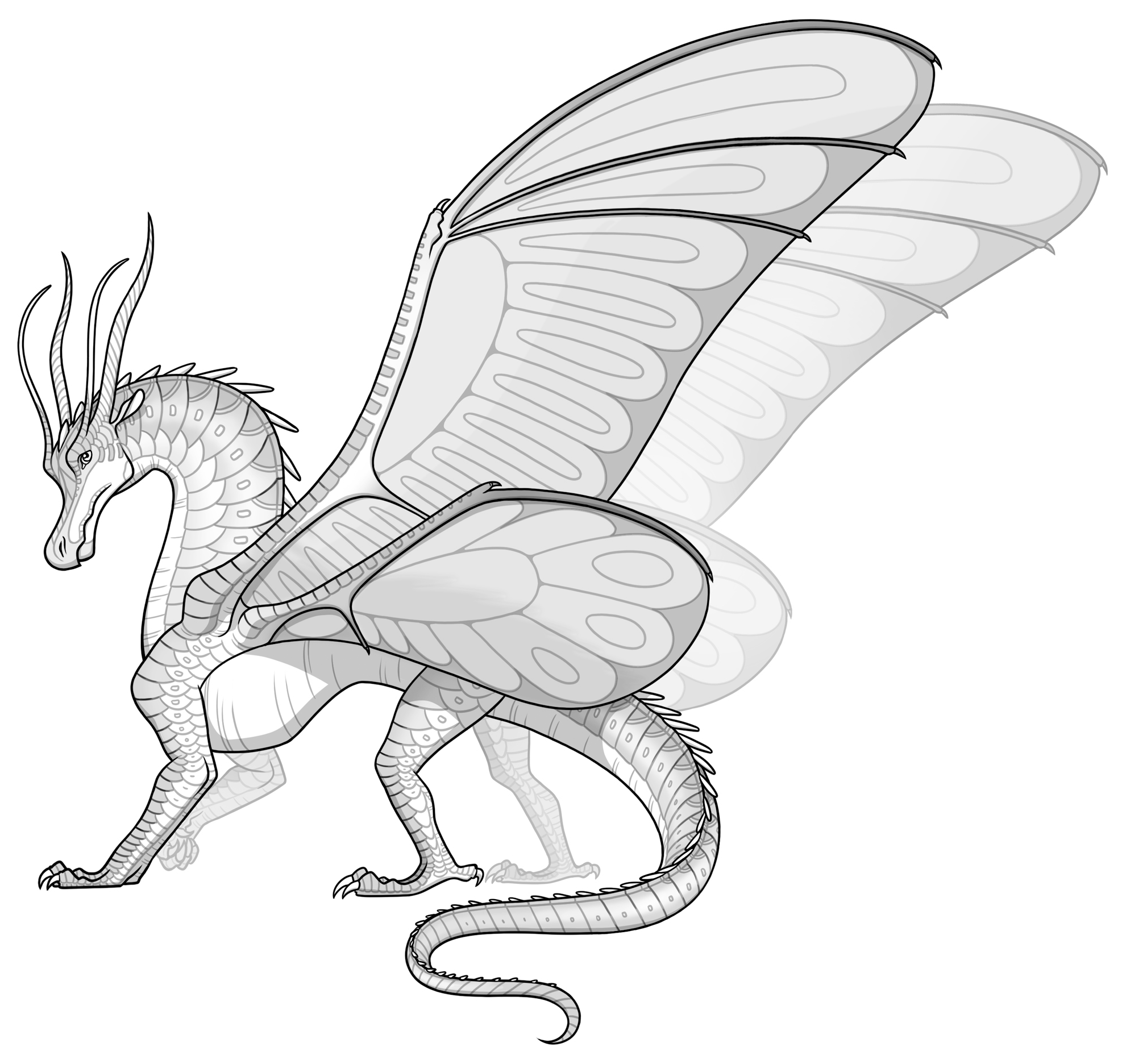 Pin By Christina Olson On Draco Bloodline Wings Of Fire Wings Of Fire Dragons Fire Drawing