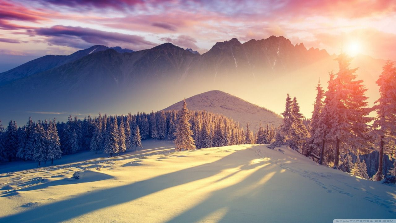 """""""Nature always wears the colors of the spirit. """" Ralph Waldo Emerson #TheBeautyofWinter #DailyNightQuote"""