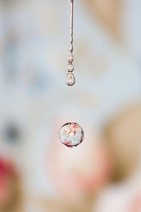 How to Shoot Amazing Water Droplet Macro Photographs|How to Shoot Amazing Water Droplet Macro Photographs