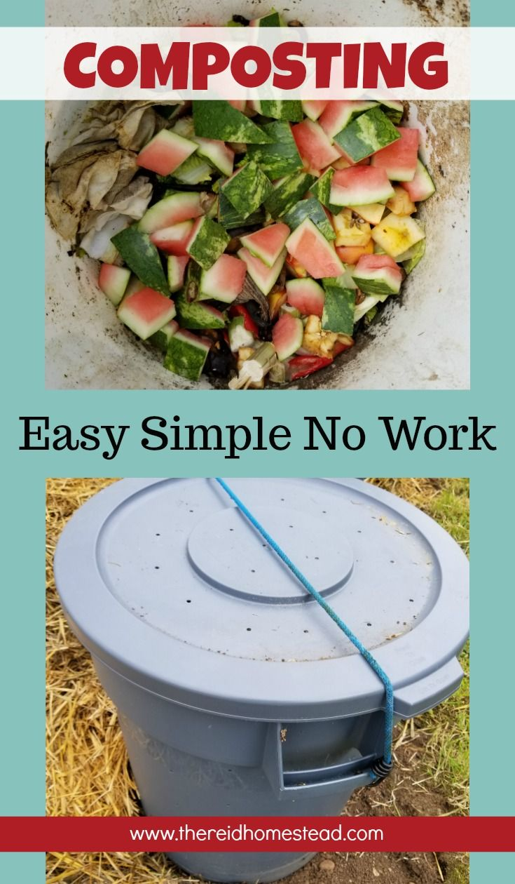 Simple Easy No Work DIY Composting | Composting, Homesteads and Gardens