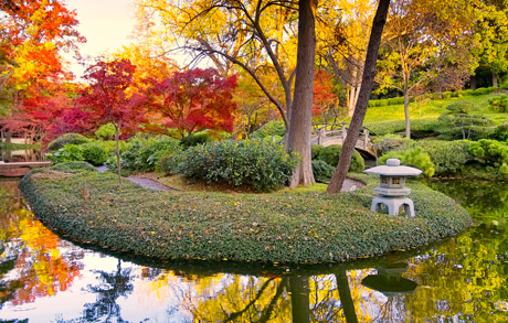 Pin on Beautiful Gardens