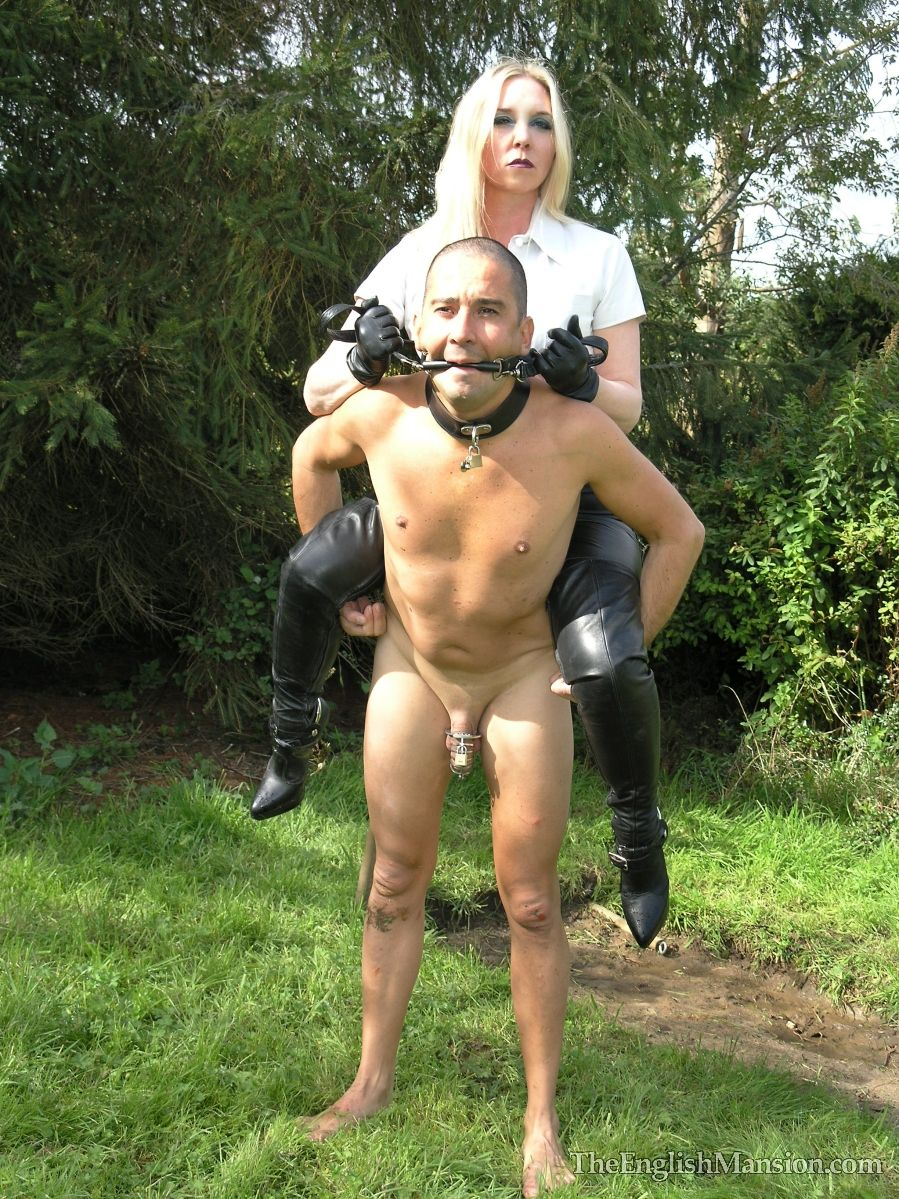 pet training  Liste de Lecture de Vidéos Pornos seekingll