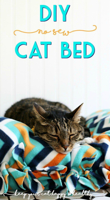 How to Make a NoSew DIY Cat Bed Diy cat bed, Cat bed