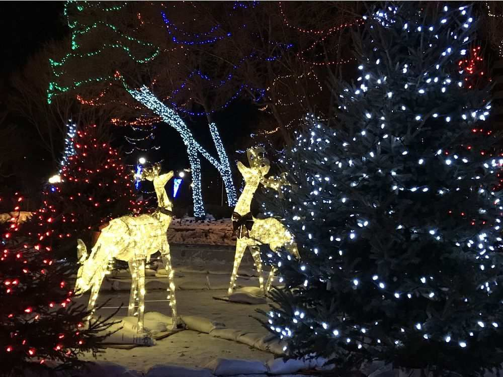 Christmas lights around the city readers share their