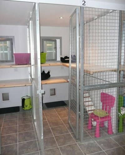 Le Chateau Cattery - Coventry cattery