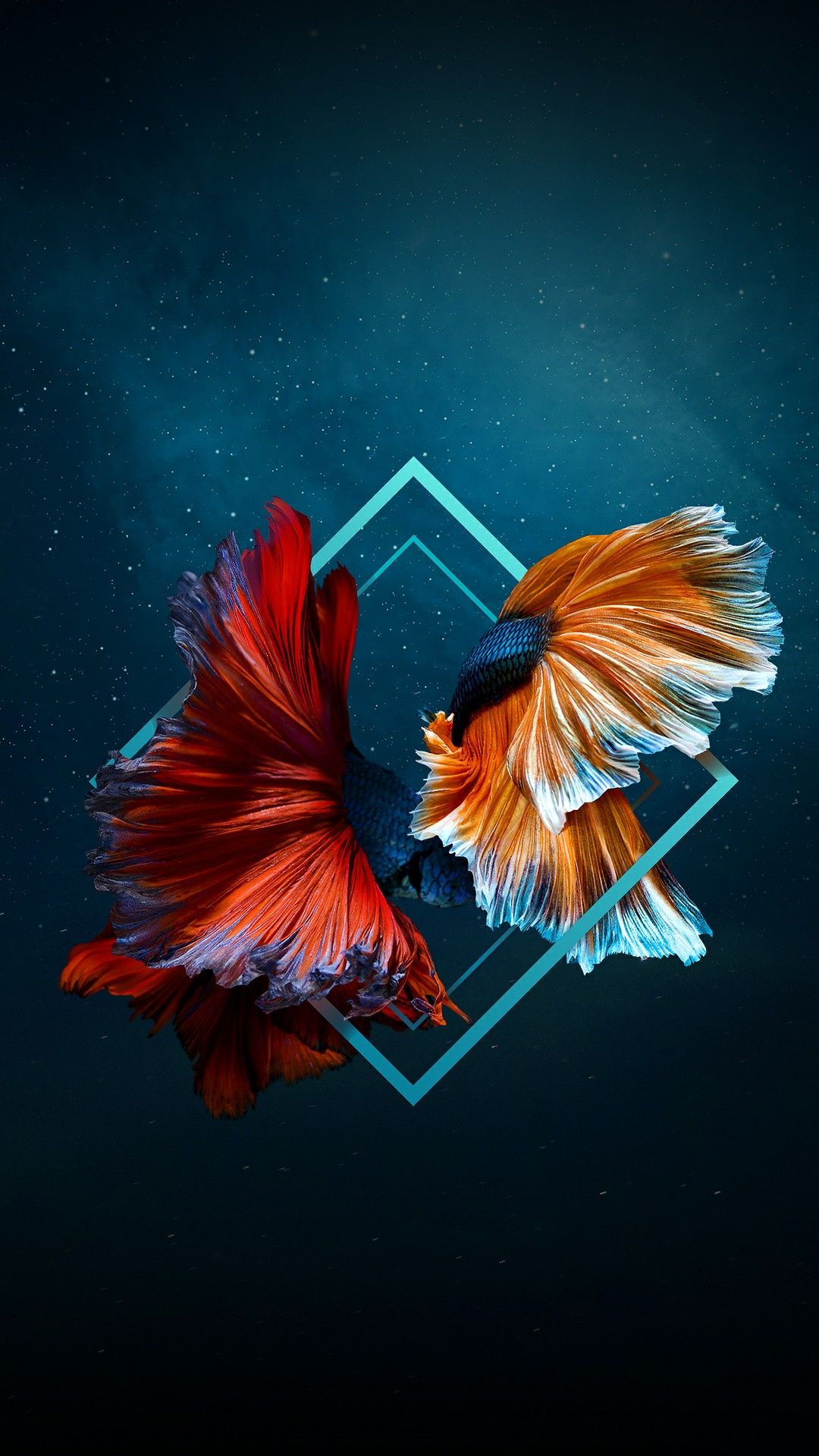 Shapes Abstract Iphone Wallpaper Mobile Wallpaper Fish Wallpaper