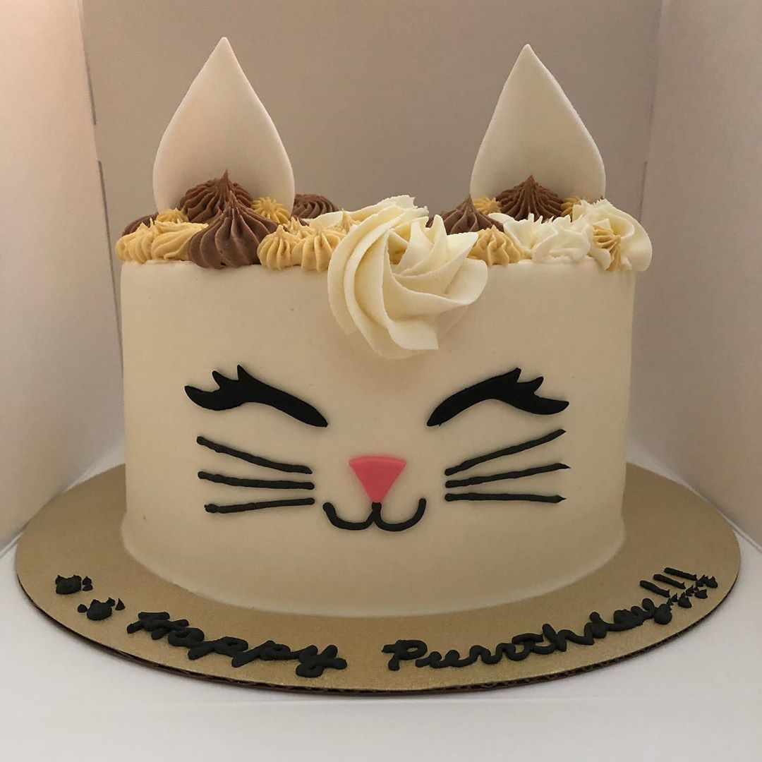 Don T You Need A Cat Cake For Your Next Purrthday Catcake